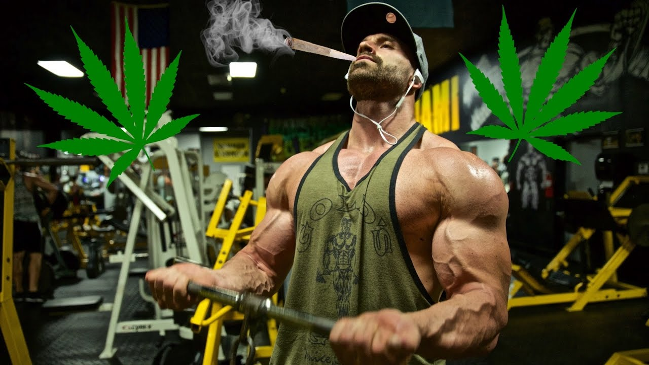 WORKING OUT AND MARIJUANA??