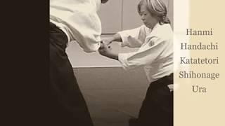 Download Aikido Hanmi Handachi Katatetori Shihonage Ura MP3