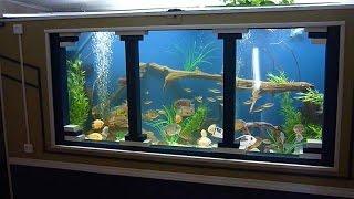 diy 1150 gallon plywood aquarium part 4