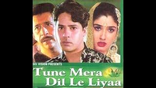 Tune Mera Dil Le Liya (2000) Rahul Roy Raveena Tandon Naseeruddin Shah