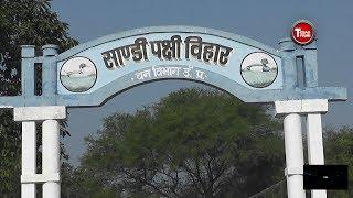 सांडी पक्षी विहार Sandi Pachchi Vihar तेजस फिल्म्स & क्रिएशन