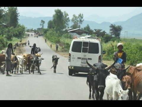 Geoffs Highway View :   Ethiopia     Kombolcha to Shewa Robit