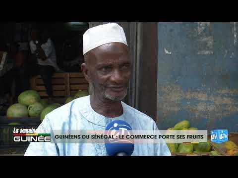 GUINÉENS DU SÉNÉGAL : LE COMMERCE PORTE SES FRUITS