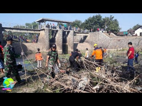 Warga Sragen Temukan Sarang Ular Piton Terbesar Di Sungai Garuda!! Ularnya Besar-Besar...