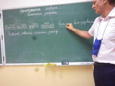 Синтаксический разбор простого предложения  (с однородными членами) в 4 классе
