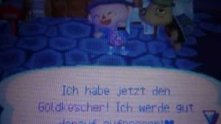Animal Crossing Wild World - Alle Insekten = Goldkescher