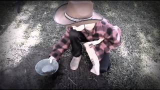 Copy of Vintage Spaghetti Westerns : The Crisco Kid versus Sherrif Starr