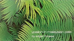 Edgar Froese - Epsilon In Malaysian Pale (Original CD)