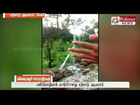 Salem : Snowfall at Yercaud - Exciting surprise to the tourist | Polimer News