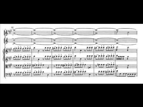 Mozart Sinfonia n. 29 K. 201 in La maggiore - I movimento - Allegro moderato (score)