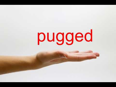 How to Pronounce pugged - American English