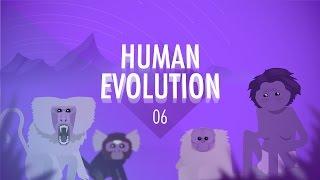 Video Human Evolution: Crash Course Big History #6 download MP3, 3GP, MP4, WEBM, AVI, FLV Desember 2017