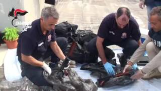 Fiumi di droga e armi da guerra, una ventina di arresti nella Bat