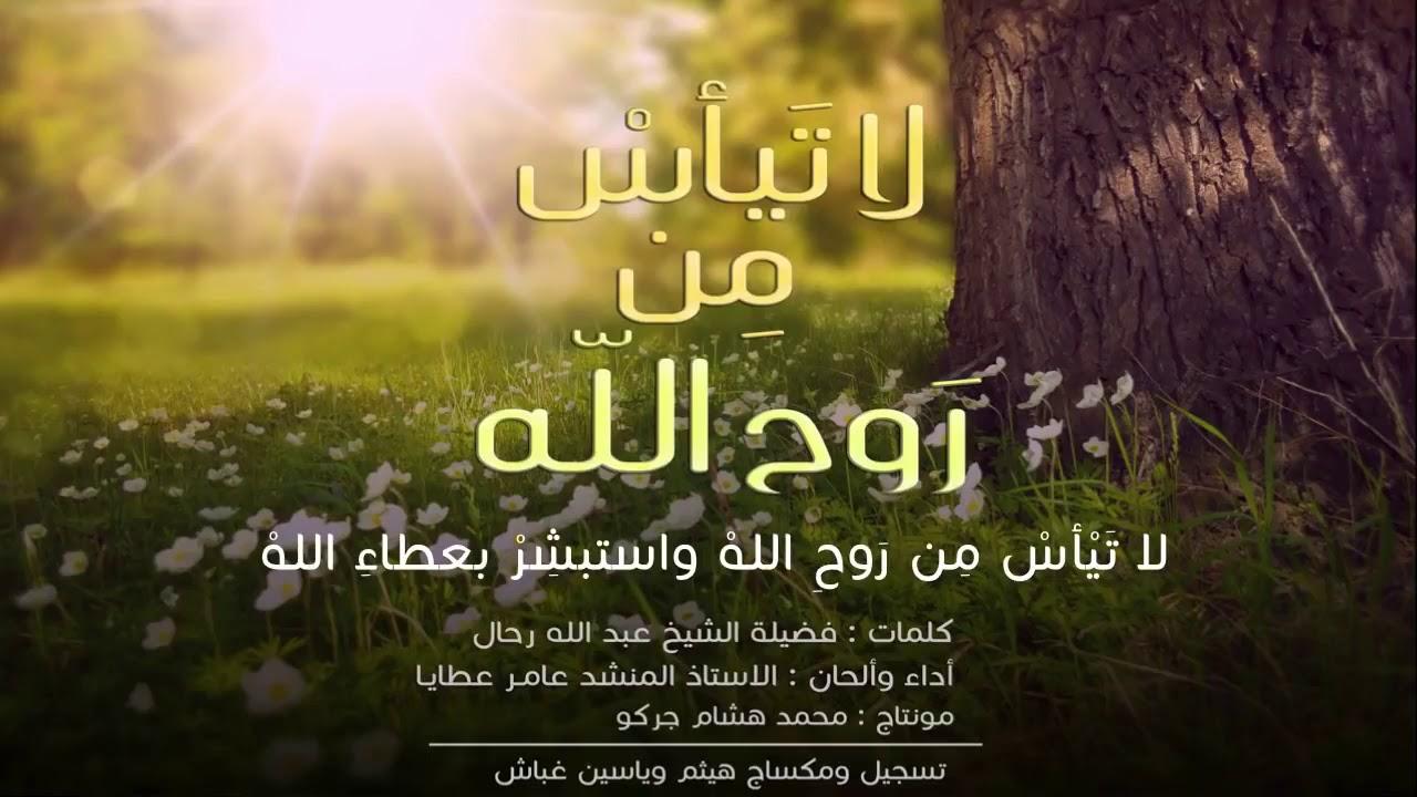 أنشودة لا تيأس من روح الله للمنشد السوري عامر عطايا Youtube