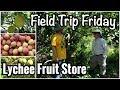 Field Trip Friday- Lychee Fruit Store in Loxahatchee