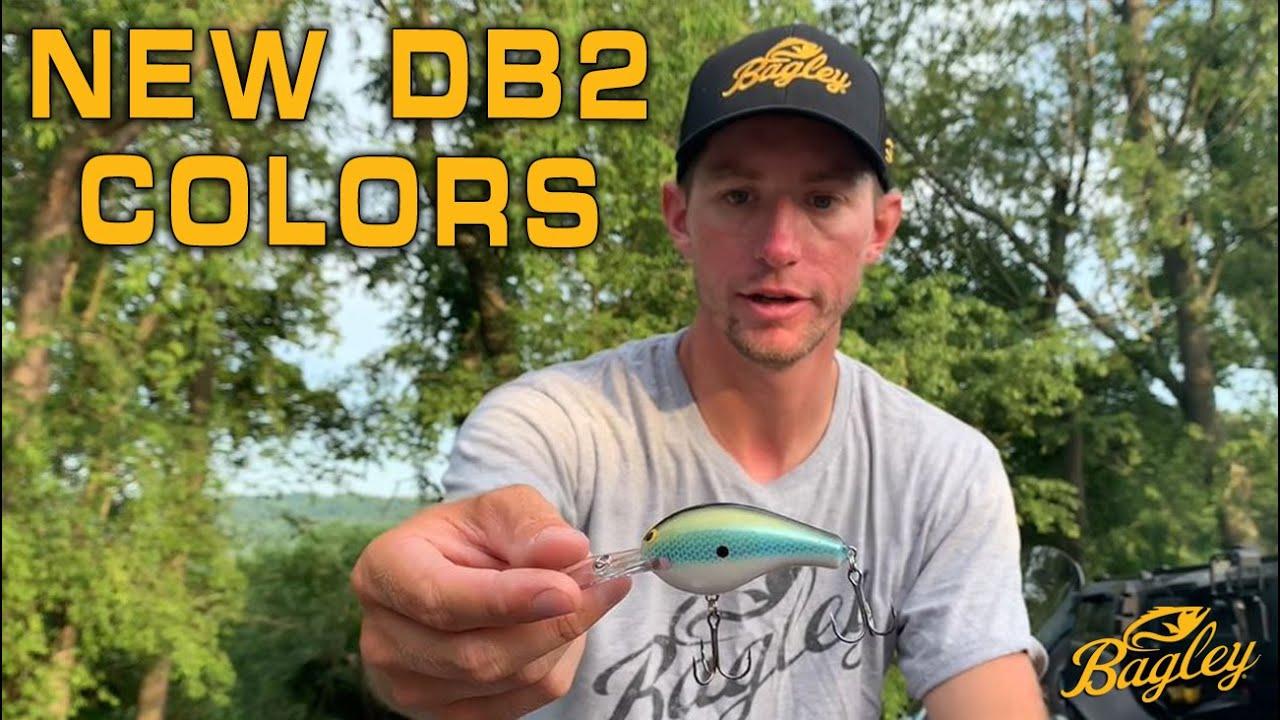 NEW! 2022 Diving Balsa B2 Colors with Matt Becker