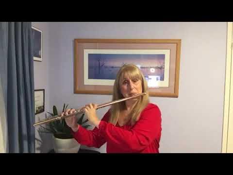 Flute Audition Masterclass #3 Recap