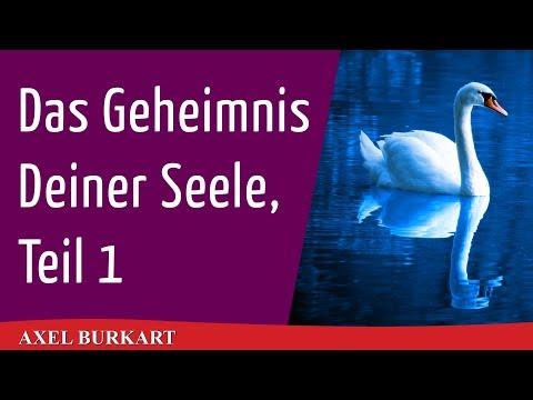 Das Geheimnis Deiner Seele, Teil 1 / Spiritualität Esoterik Karma / Rudolf Steiner Anthroposophie