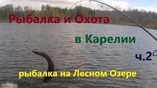 Рыбалка и Охота в Карелии ч 2 Рыбалка на Лесном озере