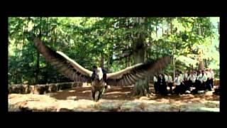 Гарри-Поттер полет