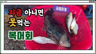 【동해묵호항맛집】 요즘 묵호항에서 한창 제철인 자연산복…