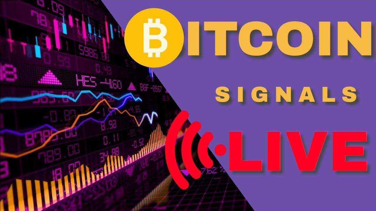btc live streaming