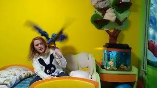 Дрессировка и воспитание большого попугая: содержание большого попугая
