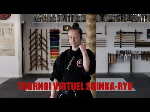 Tournoi Virtuel Shinka-Ryu