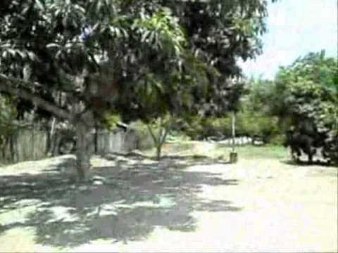 CIUDAD DE PICOTA  (ALREDODORES)