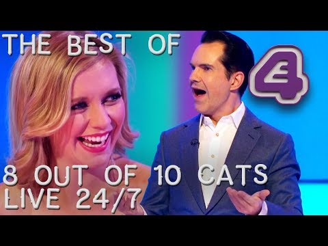Best 8 Out Of 10 Cats Clips | 24/7 Live Stream
