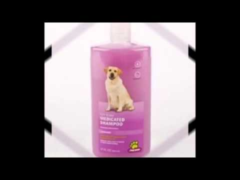 SHAMPOO FOR DOGS WITH ALLERGIES