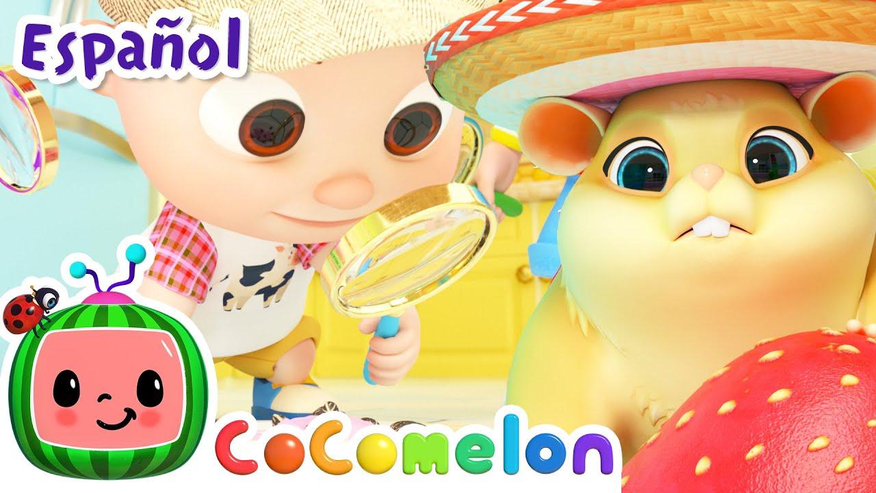 CoComelon en Español | El hámster perdido | Canciones Infantiles y de Cuna