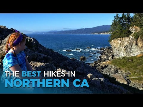 The Best Hikes for Kids in Redwood National Park | Full-time RV Family | Five 2 Go Ep. 42