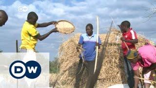 الثورة الخضراء في إفريقيا | الأخبار