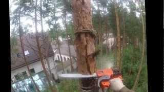 Удаление деревьев(Профессиональное удаление деревьев. Москва и область. 8 967 116 63 23 Удаление деревьев, обрезка деревьев, свали..., 2012-09-05T18:11:31.000Z)