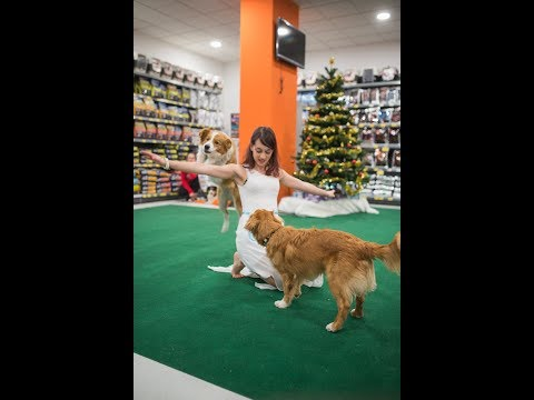 Dogdancing Rosi and Joy