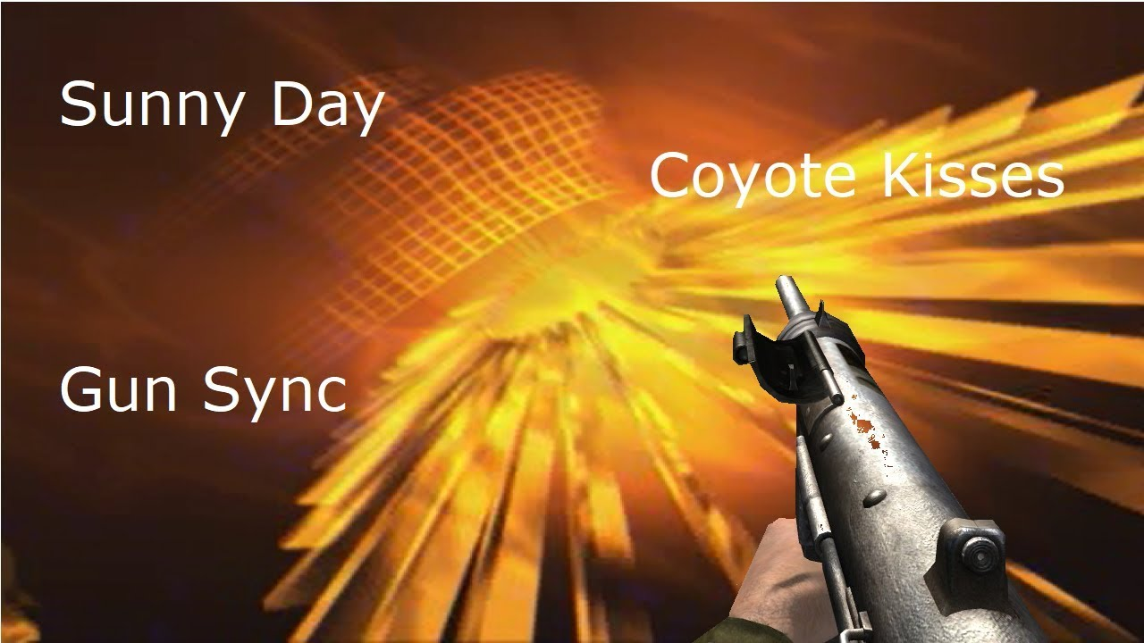 #Advanced Warfare + WWII Gun Sync Collab - Sunny Day - ft. I'm PK