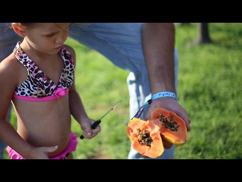 Martha's Best - the World's Sweetest NON-GMO Papaya!