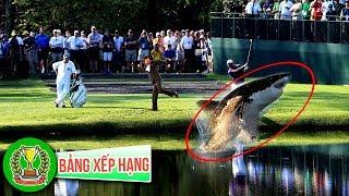 7 Loài Động Vật Kỳ Lạ Nhất Bắt Gặp Trên Sân Golf | Bảng Xếp Hạng