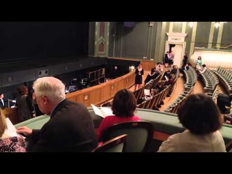 Большой театр, Новая сцена, Обзор зала