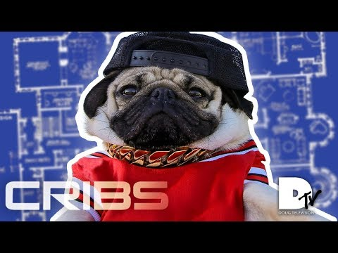 CRIBS - Doug The Pug