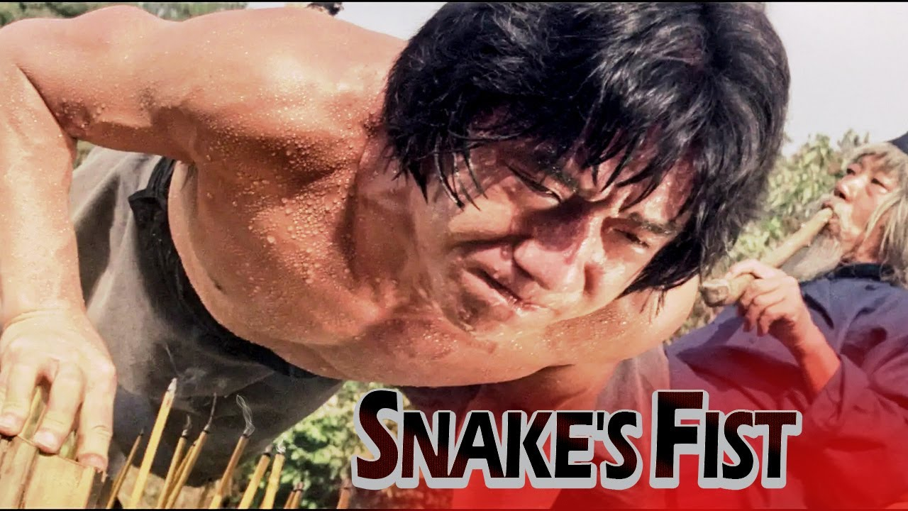 Download Snakefist ll Jackie Chan Best Chinese Martial Art Action Movie in English ll FOF