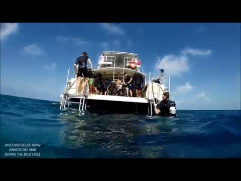 AMIGOS Diving The Blue Hole Belize