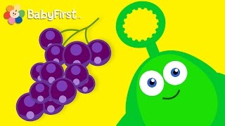 Grapes and Bugs  | Learning Cartoons for Babies | Bloop and Loop | BabyFirst TV