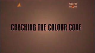 Złamać Kod Kolorów cz.1: Widzenie Barw