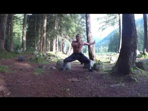 Shaolin Monk Workout