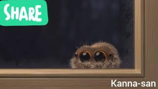 Lucas la araña en español
