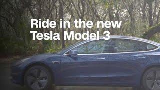 Tesla's Model 3 may not satisfy 'mainstream...