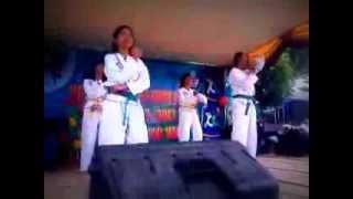 Perpisahan SMPN 01 Banjar Margo 2012/2013