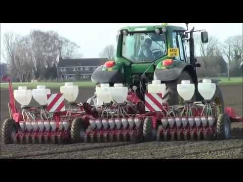Drilling onions in the fens.spring 2015